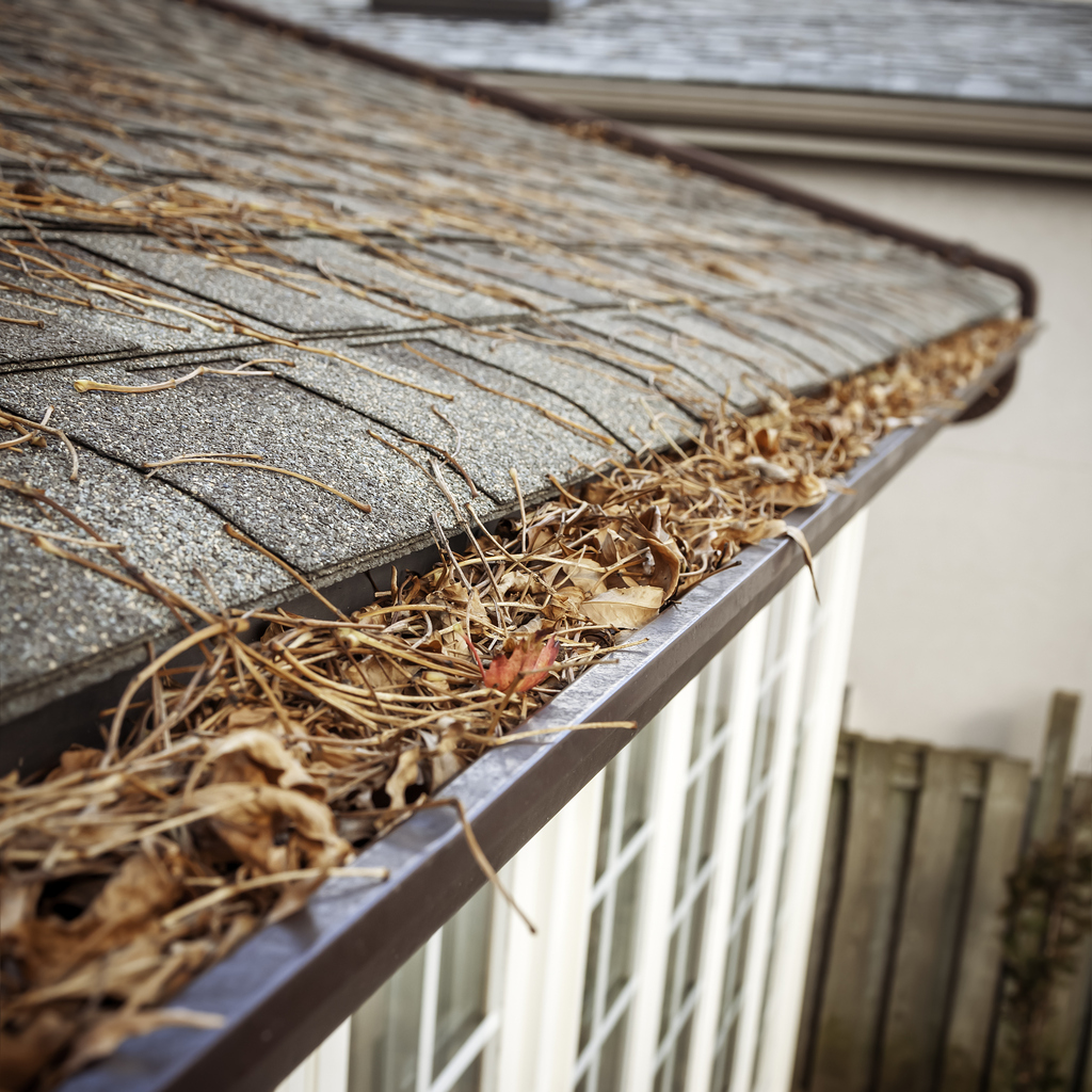 Eavestrough clogged with leaves
