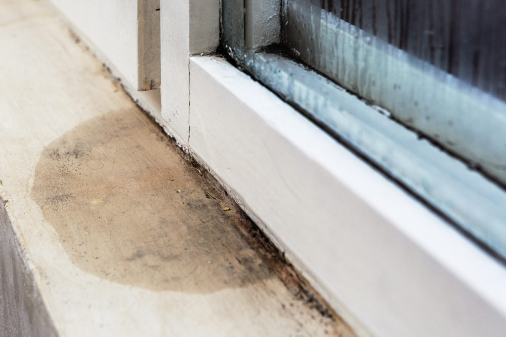 Moisture and mold problems around a house