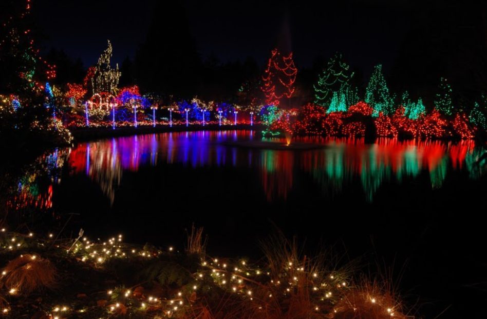 festival of lights at VanDusen, Vancouver, christmas lights
